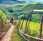 Entdeckungsreise Vietnam