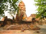Entlang des Mekongs: Von Nordthailand nach Südlaos