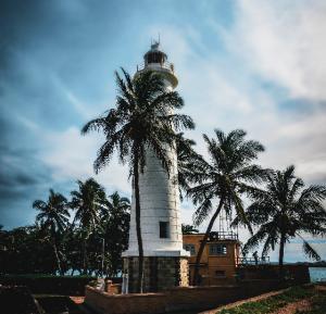 Reise zu den Wurzeln Sri Lankas mit Erkundung des Sinharaja Regenwalds
