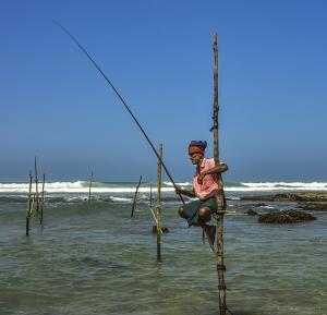 Sommerreise Sri Lanka mit Zugfahrt mit Badeurlaub an der Ostküste oder Malediven