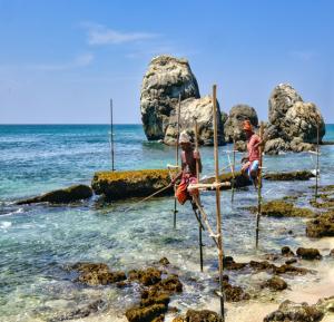 Kulturelles Erbe und natürliche Schönheit Sri Lankas mit Baden auf den Malediven