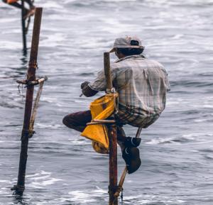 Sri Lankas natürliche Schätze und faszinierende Kultur mit Badeurlaub in Induruwa