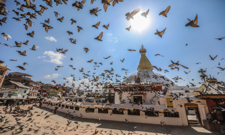nepals-kulturelle-und-landschaftliche-hohepunkte-mit-dschungelsafari-485_34838