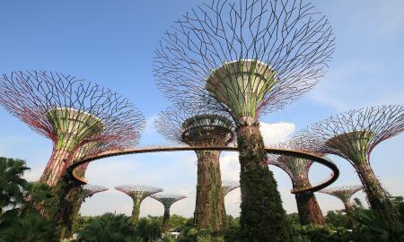 kombinationsreise-singapur-java-und-bali_38092