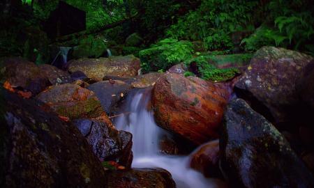 kulturelles-erbe-und-naturliche-schonheit-sri-lankas-mit-baden-auf-den-malediven_37268