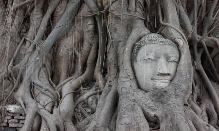 privatreise-entlang-des-flusses-kwai-zu-den-ursprungen-thailands_38277