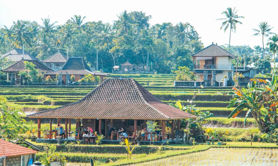 Große Entdeckungsreise durch Bali mit Badeurlaub_38137