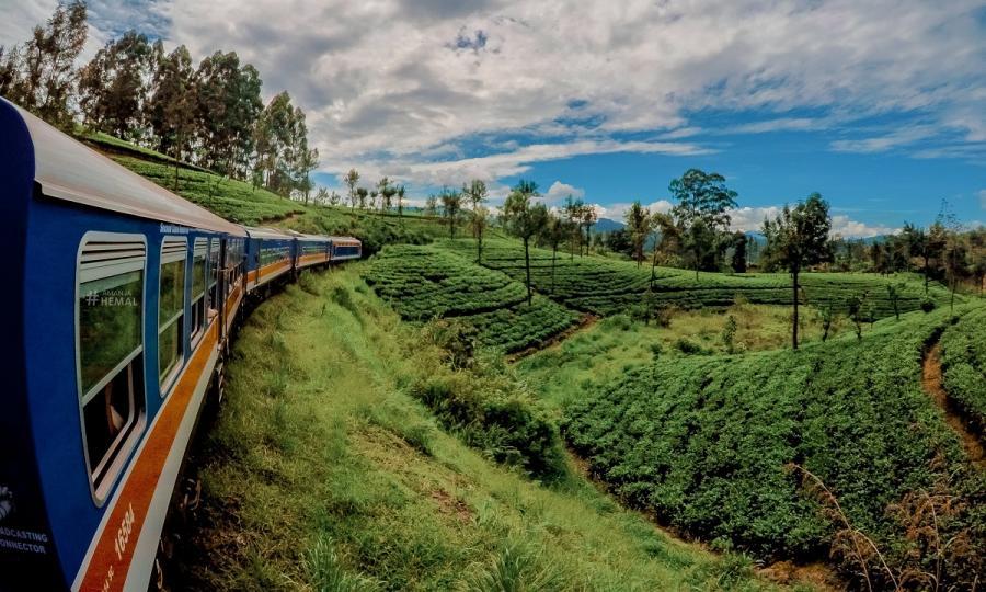 Private Sri Lanka Highlights mit Baden in Kalutara oder auf den Malediven_38082