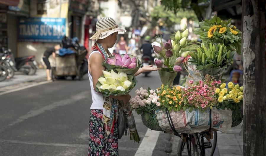 Entlang der Küste von Hanoi bis Saigon_37588