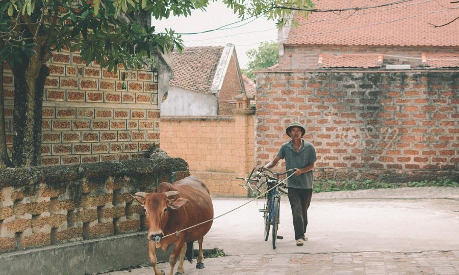Homestay Vietnam_32200