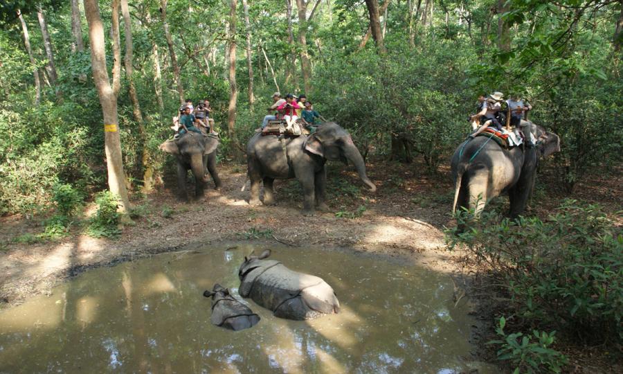 Nepals kulturelle und landschaftliche Höhepunkte mit Dschungelsafari_34839