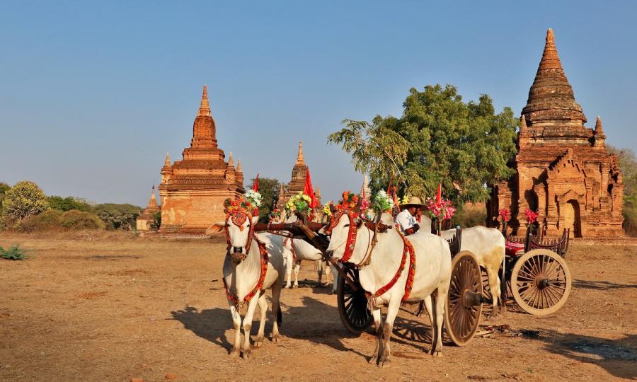 Rund um den Golf von Martaban und Zentral-Myanmar_36521