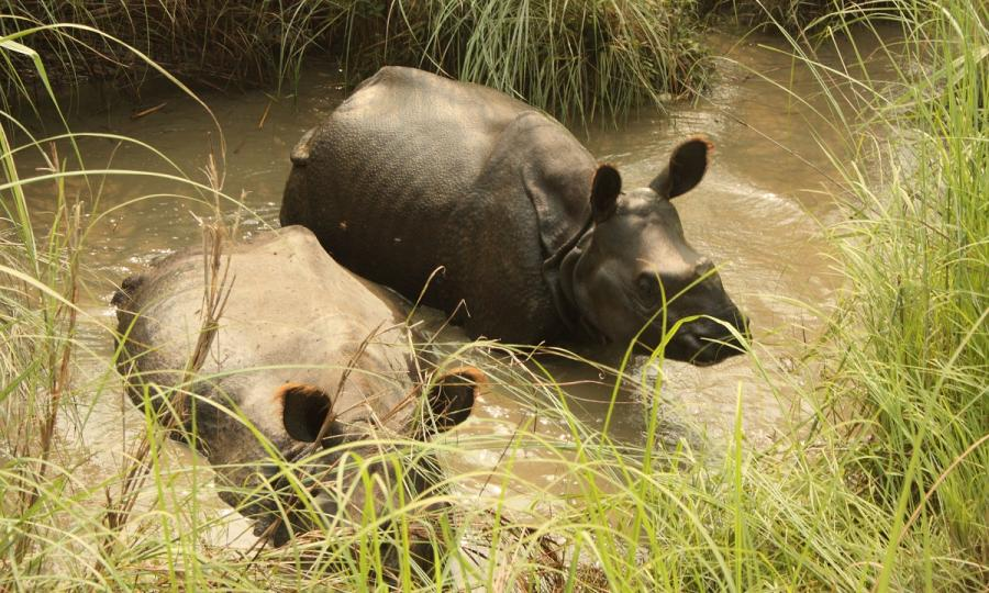 Abenteuerreise durch Nepal_34833