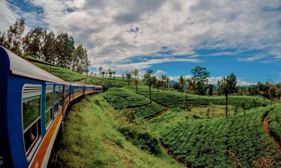 Faszination Sri Lanka mit Abstecher in den unbekannten Norden_38047
