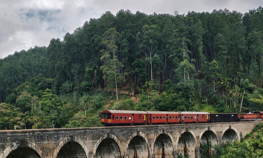 Faszination Sri Lanka mit Abstecher in den unbekannten Norden_38043