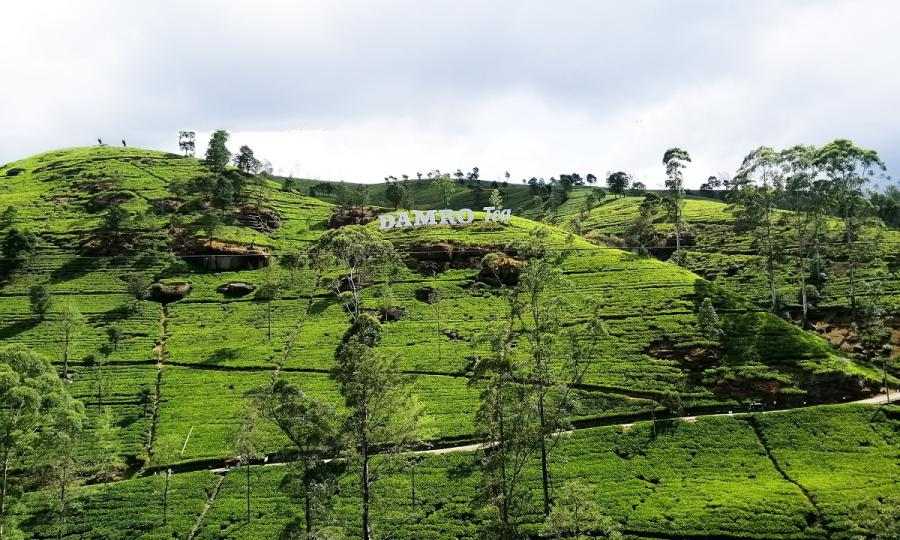 Sri Lanka natürliche Schätze und faszinierende Kultur_38031