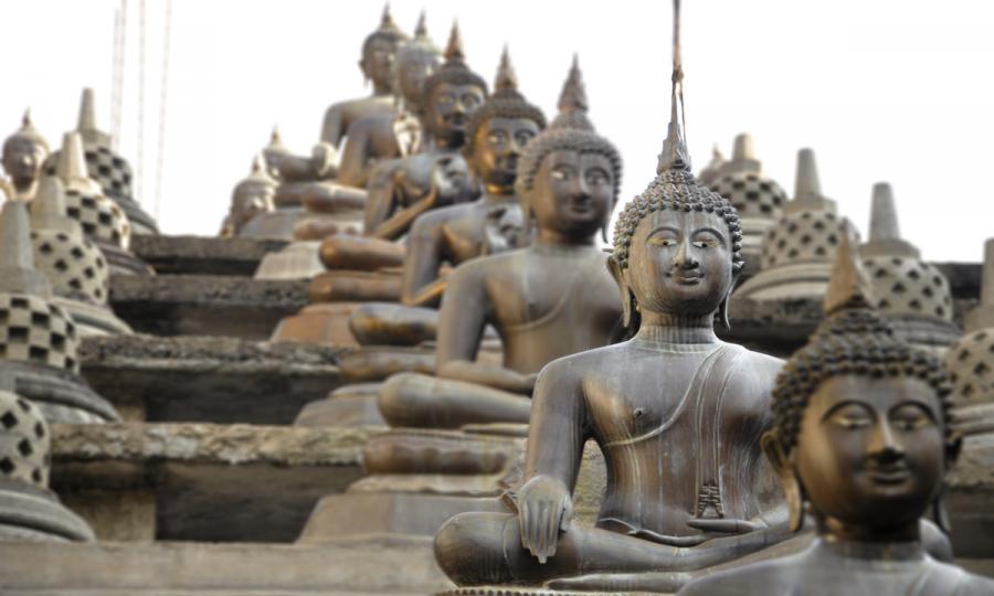 Faszination Sri Lanka mit Abstecher in den unbekannten Norden_38708