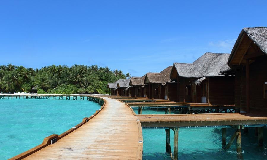 Kulturelles Erbe und natürliche Schönheit Sri Lankas mit Baden auf den Malediven_37260
