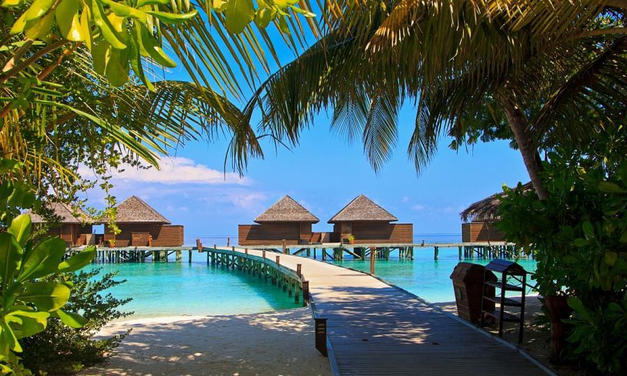 Kulturelles Erbe und natürliche Schönheit Sri Lankas mit Baden auf den Malediven_37261