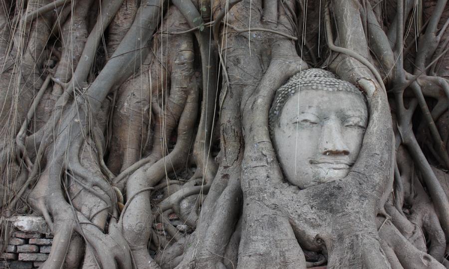 Privatreise entlang des Flusses Kwai zu den Ursprüngen Thailands_38277